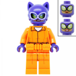 Catwoman in Arkham Suit LEGO Batman Movie LEGO Minifigures 70912